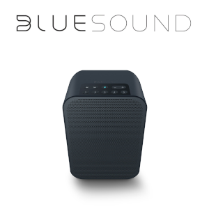 bluesound flex 2i